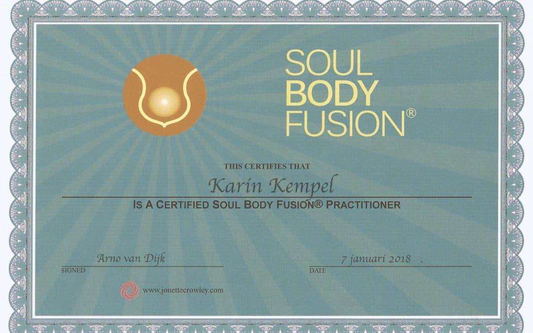 Effecten Soul Body Fusion ®